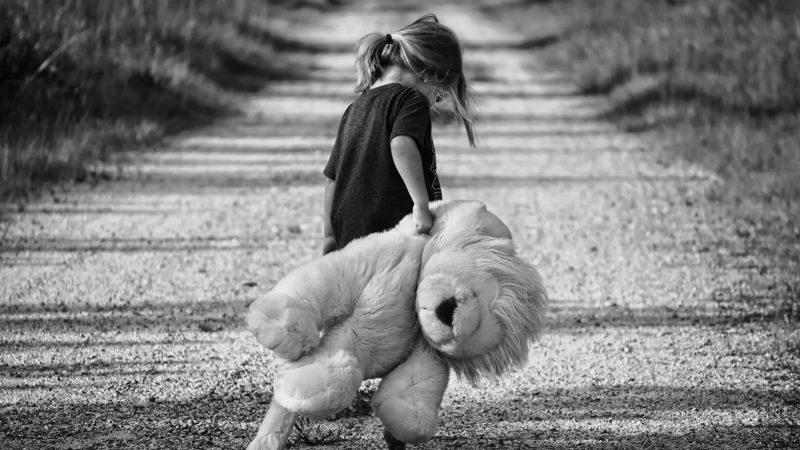 Criança sozinha em uma estrada, de costas e cabeça baixa, segurando um leão de pelúcia